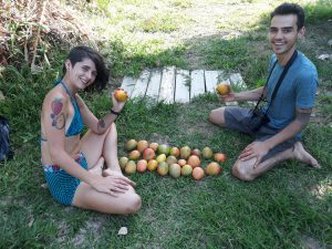 Fruit from CarRod's Gardens