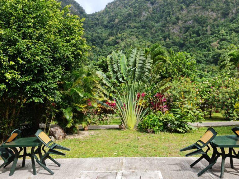 Rodney's Wellness Retreat CarRod's Garden Relaxation Spot