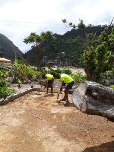 CarRod's Gardens Rodney's Wellness Retreat Going Green